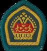 Queen's Scout Award
